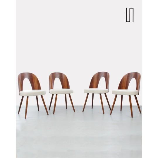 Suite de 4 chaises de l'Est par Antonin Suman, 1960