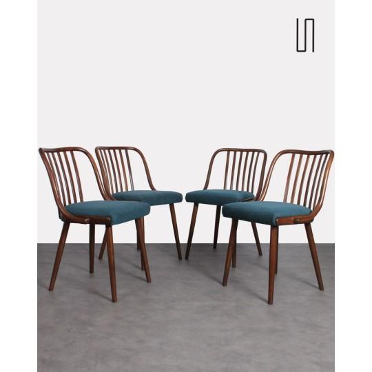 Suite de 4 chaises vintage de l'Est pour Jitona, 1960, Mobilier design vintage