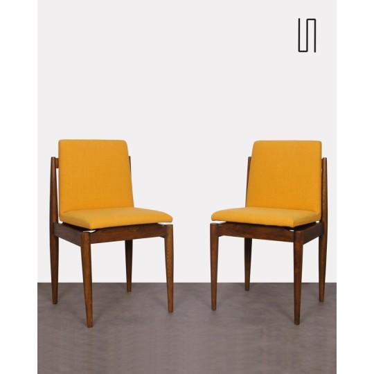 Paire de chaises des pays de l'Est, 1960