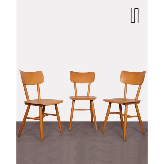 Suite de 3 chaises vintage d'Europe de l'Est, 1960