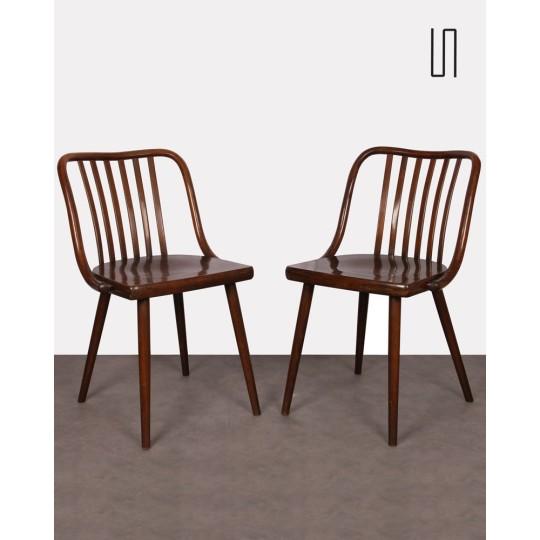 Paire de chaises tchèques par Antonin Suman, 1960