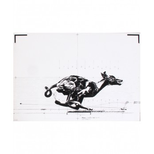VLADIMIR VELICKOVIC - Dog (Animal in motion)