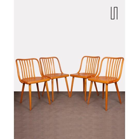 Suite de 4 chaises par Antonin Suman pour Ton, 1960
