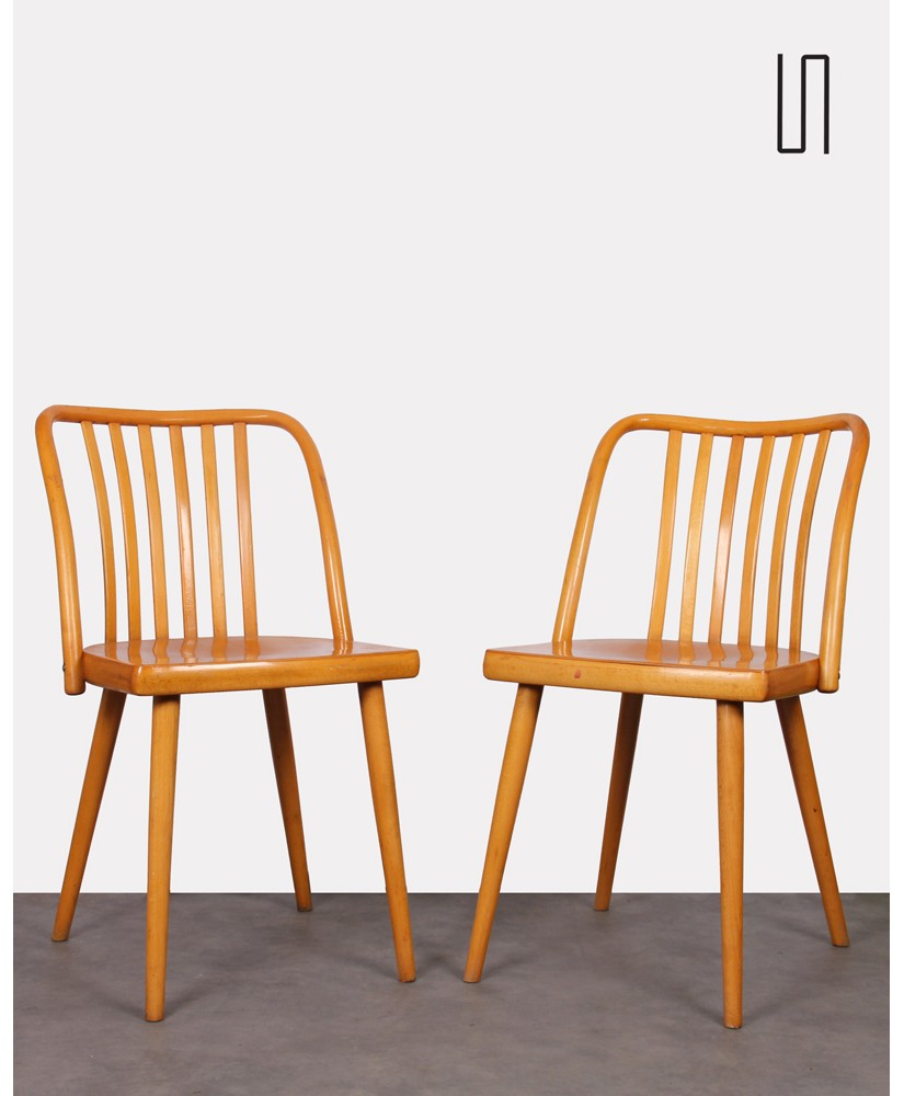 Pair of chairs by Antonin Suman for Ton, 1960s