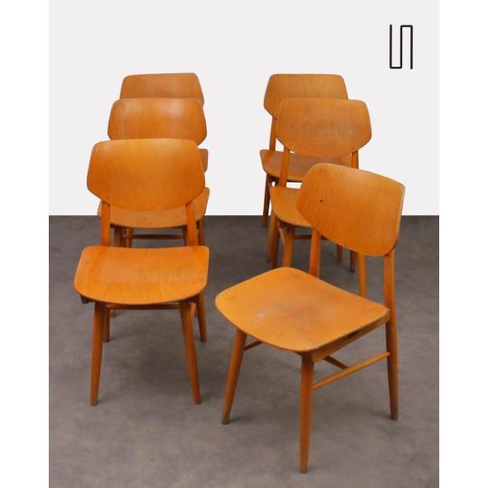 Suite de 6 chaises vintage pour Ton, design tchèque, 1960