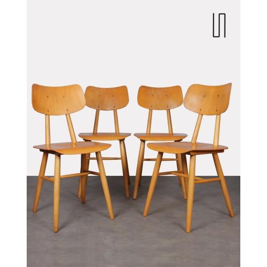 Suite de 4 chaises d'Europe de l'Est pour Ton, 1960