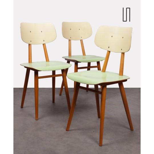 Suite de 3 chaises tchèques pour le fabricant Ton, 1960