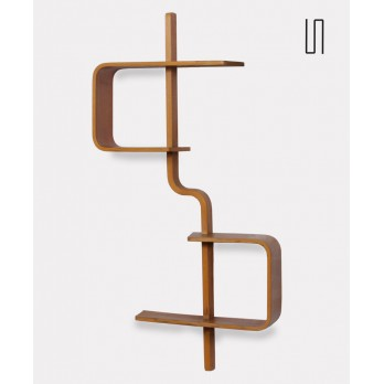 Wall shelf by Ludvik Volak for Drevopodnik Holesov, 1960s