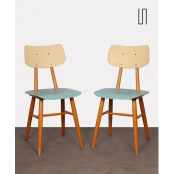 Pair of blue chairs for the manufacturer Ton, 1960