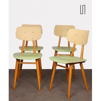 Set of 4 green chairs for Ton, 1960s