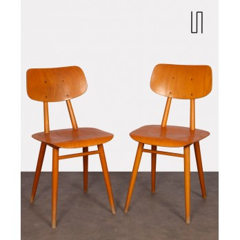 Pair of chairs for Ton, 1960s
