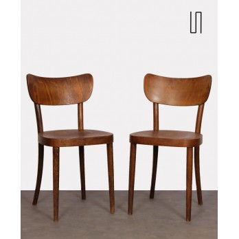 Pair of wooden chairs made by Ton, 1960s