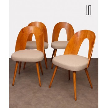 Suite of 4 chairs by Antonin Suman for Tatra Nabytok, 1960s