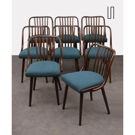 Suite de 8 chaises par Antonin Suman pour Jitona, 1960
