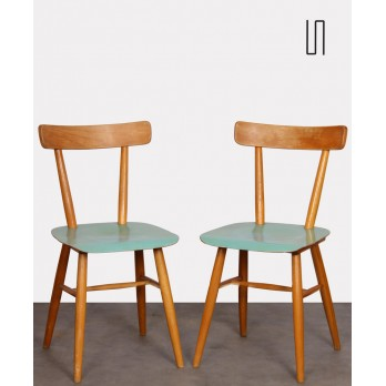 Pair of blue chairs edited by Ton, 1960