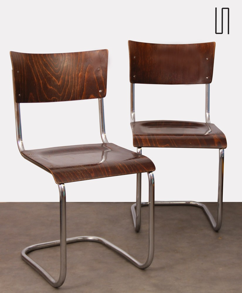 Pair of vintage chairs by Mart Stam for Kovona, 1940s