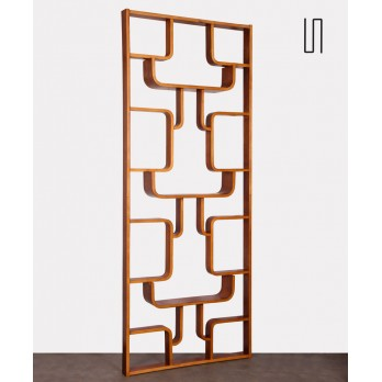 Room divider by Ludvik Volak for Drevopodnik Holesov, 1960s