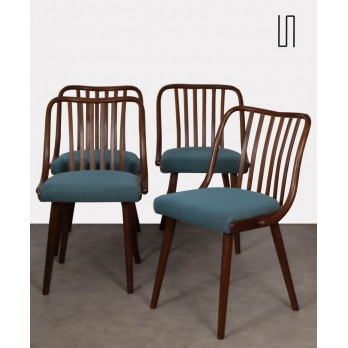 Set of 4 chairs by Antonin Suman for Jitona, 1960s