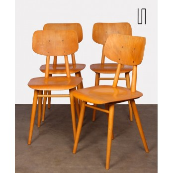 Suite of 4 chairs produced by Ton, 1960