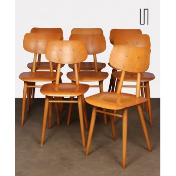 Suite of 8 wooden chairs produced by Ton, 1960s