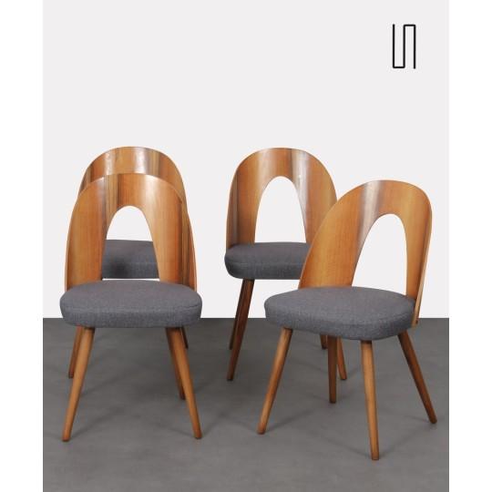 Série de 4 chaises en noyer par Antonin Suman, 1960