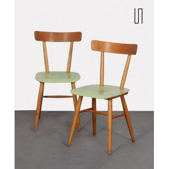 Pair of green chairs edited by Ton, circa 1960