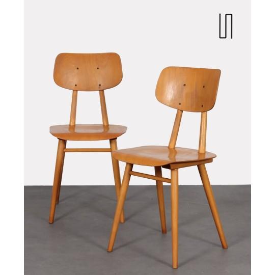 Paire de chaises d'Europe de l'Est, 1960