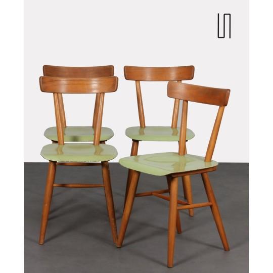 Suite de 4 chaises vertes éditées par Ton, vers 1960