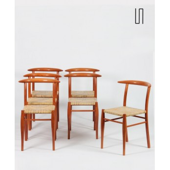 Suite of 6 Tessa Nature chairs by Philippe Starck for Driade, 1989